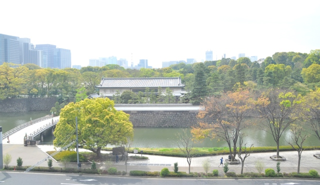 One of the entrances to the Imperial Palace from Mainichi Shimbun conference room. This newspaper, not the biggest, has 21 science writers and a circulation of of 4 million without any tits. Japan is where journalism happens.