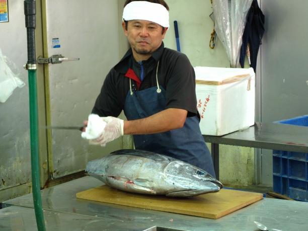 Sashimi Sid