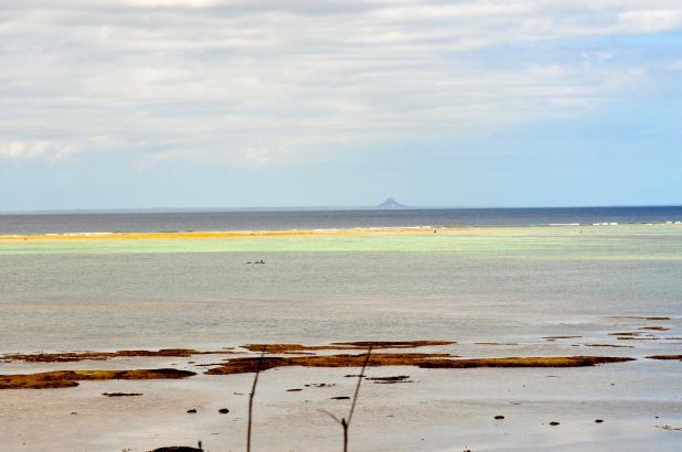 Spring low tides.