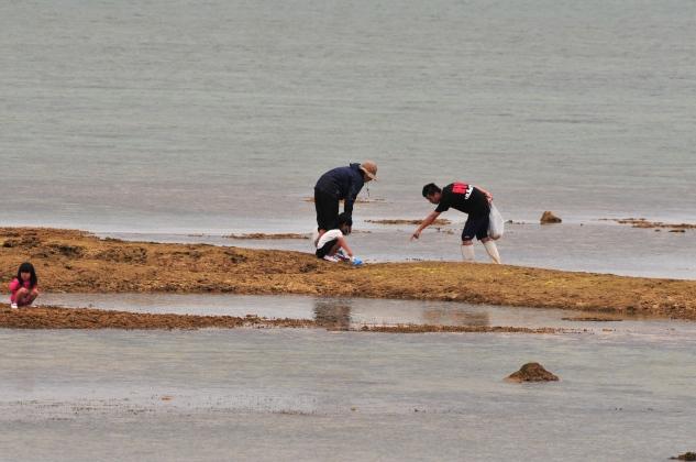 Ancient seaweed arts being passed on.